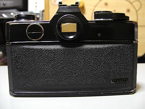 P5070059.jpg